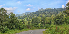 From the Road (SivamDesign) Tags: canon eos 550d rebel t2i kiss x4 18135mm zoom kit canonefs18135mmf3556is wayanad kerala forest landscape nik collection plugins filters