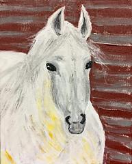 My White Horse (BKHagar *Kim*) Tags: bkhagar art artwork painting paint acrylic horse equine white mare