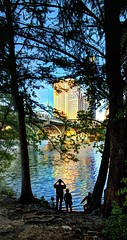 Along the Colorado River in Austin TX (JoelDeluxe) Tags: congress bridge mexican freetail bats austin tx congressional session october 2017 joeldeluxe