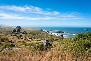 View from the Sonoma Coast