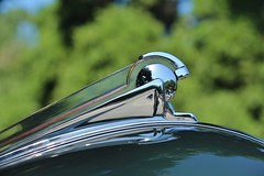21st Annual La Verne Cool Cruise (USautos98) Tags: 1950 ford shoebox hoodornament