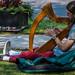2017 - Charlottetown - Harpist