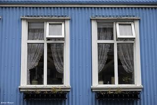 Windows in blue - Reykjavík