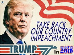 D.Trump Impeachment (doctor075) Tags: donaldjtrump donaldjdrumpf republicanparty teaparty humourparodysatirecomedypoliticsrepublicanteapartygopfoxnews
