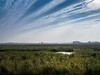 Upton Marshes (AMcUK) Tags: em10 omdem10mki em10mki omd olympus olympusuk m43 micro43rds micro43 microfourthirds upton marshes norfolkbroads norfolkmarshes norfolkskies