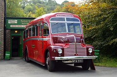 MYA590 (PD3.) Tags: 1949 leyland comet mya590 mya 590 scarlet pimpernel amberley west sussex chalk pits museum bus buses preserved vintage coach heritage centre show historic history