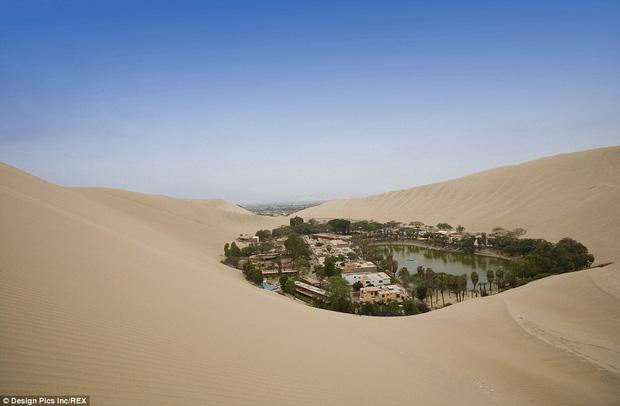 Không ai ngờ rằng, giữa sa mạc cằn cỗi bậc nhất thế giới lại có một thị trấn xanh tươi đến vậy - Ảnh 1.