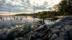 Autumn Gray (Gary Walters) Tags: trees water sunrise reflections manasquanreservoir sel1635z nj deadtree landscape foliage autumn fall sonya7r clouds longexposure scenic
