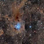 NGC 7023 version final thumbnail