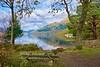 Loch Lomond (billmac_sco) Tags: scotland lochlomond rowerdennan water landscape scenic trees reflections