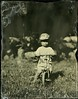 20170826_96433 (AWelsh) Tags: tin tintype plate wet wetplate aluminotype collodion epson v700 scan 8x10 improved rochester standard dallmeyer group portrait lens 14 14in elliott kid child toddler boy bike bicycle helmet