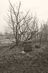 _MG_8298 (daniel.p.dezso) Tags: kiskunlacháza kiskunlacházi elhagyatott orosz szoviet laktanya abandoned russian soviet barrack urbex ruin rooftop reclaim