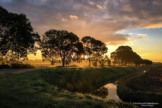 De zon in het polderse landschap - Zwartewaal/NL