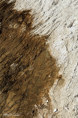 Dark and Light_27A0452 (Alfred J. Lockwood Photography) Tags: alfredjlockwood nature abstract mammothhotsprings travertine color patterns texture shapes yellowstonenationalpark morning wyoming summer microbialmat thermophiles extremophiles