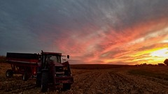 and so it begins again... (BillsExplorations) Tags: harvest field country rural corn tractor wagon case clouds farm agriculture rain drought fall fiery farmmachinery fallharvest illinois midwest