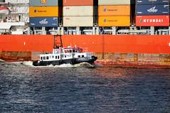 """Lotse 2"" an Containerschiff ""Santa Bettina"" (Gelegenheitsknipser) Tags: marcopagel mpfotonet gelegenheitsknipserde 2012 hansestadt hamburg hh norddeutschland deutschland hafen schiff schiffe elbe boot lotsenboot lotse frachtschiff frachter finkenwerder hamburgfinkenwerder santabettina containerschiff containerfrachter container detail schiffsdetail mmsi211318600 da6504 imo9338084 mmsi229979000 9ha3768"