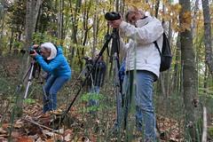 cours de photographie pour #flickr friday (nicoleforget) Tags: photographes caméras trépieds flickr friday mettre la barre haute