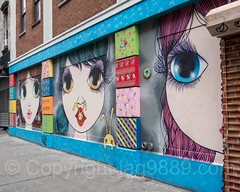 Whimsical World Rivington Wall Mural (2015) by Nina Pandolfo for Coburn Projects, Lower East Side, New York City (jag9889) Tags: 2017 20171014 eyes face girl graffiti les lowereastside lowermanhattan manhattan mouth mural ny nyc newyork newyorkcity outdoor painting portrait streetart tagging usa unitedstates unitedstatesofamerica wall jag9889 us