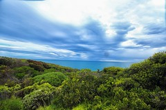 Beautiful nature (Masoodz) Tags: aireys inlet pacific ocean greatoceanroad victoria australia vacation holidays roadtrip fantasticnature beautiful canon 650d efs1018mm dpp4 googlenik colorefexpro clouds sea water famalin green foilage blue ngc