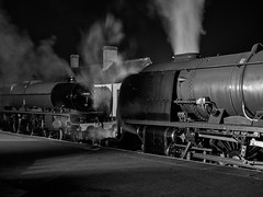 MRC2017-89 (Dreaming of Steam) Tags: 6233 46203 46233 duchess duchessofsutherland heritage heritagerailways lms midlandrailwaycentre princesscoronation princesscoronationclass princessmargaretrose princessroyalclass railway stainer steam steamengine sutherland train vintage engine locomotive railroad smoke steamlocomotive