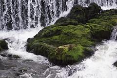 Inspiration (tusenord) Tags: inspiration fotosondag fs171022 natur nature campusnorrköping vatten klippa fors water landskap