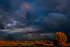 Autumn's Storm Light (sdl39hogger) Tags: thunderstorm dyingstorm nationalgeographic bluenorthern coldfront autumncoldfront canon canont6i nature natural stormlightwisconsin weather