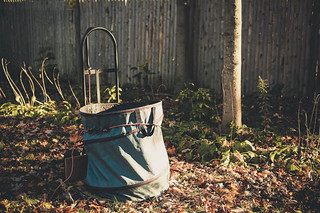 ~Fall Clean-up~