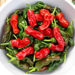 Peter Pepper crop (Badly Drawn Dad) Tags: capsicum chili chilli crop gbr greaterlondon harvest hot pepper peterpepper sydenham unitedkingdom explored 8000views 9000views