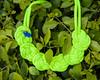 _MG_0283 (Khyrilaly) Tags: chela khyrilaly lizardo queretaro emprendedores