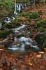 www.hakanaydın.com.tr (hakanaydin06) Tags: bolu geo:lat=4094301830 geo:lon=3174658300 geotagged lake turkey yedigöller