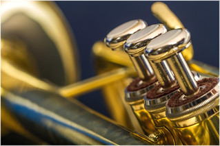 Macro Mondays – Musical Instruments