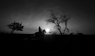 Contraluces en blanco & negro