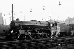 44865 (Gricerman) Tags: willesden willesdenshed willesdenengineshed black5 black5class 460 44865 steam steambr steammidland midland midlandsteam midlandsteambr br britishrailways brsteam brmidland lms