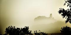 Château de Gurson, Dordogne (Weblody) Tags: dordogne périgord france brume fumée perché brouillard feuille ombre ruine château jaune beige