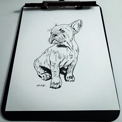 #inktober #inktober2017 #ink #inked #inking #drawn #drawing #draw #illustration #art #artwork #dog #puppy #pen #inktober #inktober2017 #ink #inked #inking #drawn #drawing #draw #illustration #art #artwork #dog #puppy #pen (jamesglina) Tags: jamesglinajamesglinajamesglinaglinajamesglinajames pen inktober inktober2017 ink inked inking drawn drawing draw illustration art artwork dog puppy