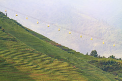 rice terrace - 13