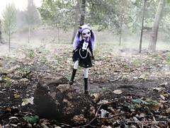 Clawdeen Wolf (seiya_mooncat) Tags: monsterhigh doll dolls osalina mattel photo photos mh 2017 monsterhigh2017 photoshoot clawdeenwolf werewolf wolf freakduchic noir