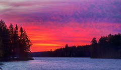 Radiant Morning. (PebblePicJay) Tags: algonquinpark fire sky forest tree lake bigtroutlake water ontario canada eos6d