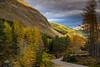 The colours of the hills (ola_er) Tags: colours autumn tree trees national park nikon sigma road hills mountains green orange yellow sky