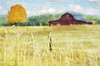 Red Barn in a Golden Field (Sherrie St Hilaire) Tags: landscape barn field fence wheat grass weeds painterly digitalart impressionistic minimal newportwa simplistic lessismore topaz 60mm autumn fall