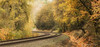 Waiting for the Train (Angie Vogel Nature Photography) Tags: railroadtracks autumn nature emptytracks waitingforthetrain traintracks trees