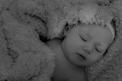 Cameri (NamelessPhotographs) Tags: newborn baby babygirl babyphotos babyphotographer style summer spring flower smile sleeping happy love daughter family person people portrait mini nature tennessee tnphotos tnphotographer tnphotography middletn dicksontn exploretn middletnphotographer murfreesboro rutherfordcounty pink white light bright newborprop newbornphotos new comfy sweet lovely explore outdoors color colorful