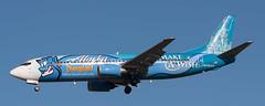 B737 | N706AS | SEA | 20080906 (Wally.H) Tags: boeing 737 boeing737 b737 n706as alaskaairlines disneyland makeawish sea ksea seattle tacoma seatac airport