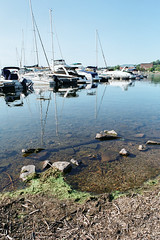 "Burlington (Peter Gutierrez) Tags: photo united states america american americana usa east eastern north northern northeastern northeast ""new england"" lake champlain vermont chittenden burlington coast coastal sea seaside lakeside water adirondacks mountain mountains harbor harbour boat boats marina sail sailing sailboat sailboats peter gutierrez ""peter gutierrez"" film photograph photography"