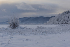 Cerknica Lake (happy.apple) Tags: otok cerknica slovenia si cerkniškojezero cerknicalake slovenija winter morning zima jutro cloudy oblaki geotagged
