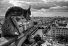 Gargoyle's view of Paris (michael.mu) Tags: paris france skyline notredame gargoyle leica m240 35mm leicasummicron35mmf20asph leicasummicronm1235mmasph silverefexpro blackandwhite bw monochrome