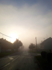 this morning (sean and nina) Tags: morning fog street path fall autum october petrinja croatia croatian hrvatska weather outdoor outside eu europe europen village town public trees houses