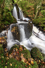 Falls at Autumn (Howie Mudge LRPS BPE1*) Tags: landscape nature outside outdoors autumn autumnal october 2017 water river cascade longexposure arthogfalls woods woodland forest ngc nationalgeographic hiddengem travel travelling traveller rocks boulders trees leaves leaf branches colourful colorful arthog gwynedd wales cymru uk overcast bracken ferns beautiful love canon canoneos80d 1018mmlens efs1018mmf4556isstm
