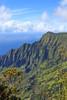 Kalalau Valley (Mike Sirotin) Tags: kokeestatepark kokeʻestatepark landscape pacificocean kalalauvalley puuokilalookout hawaii nāpalicoast trees nature water usa napalicoast kaui cliffs puʻuokilalookout rainforest green kauaʻi lush puuokila valley