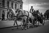 Vienna Fiaker ... (Gorky1985) Tags: vienna wien fiaker austria zentrum ringstrasse horse carriage black white schwarz weiss urban city stadt street burgtheater goran cosic nikon nikkor 30mm 18